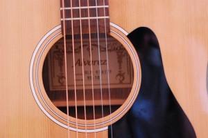 acoustic guitar in canton mi
