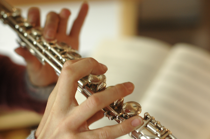Flute lessons in Macomb Township